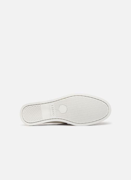 Zapatos con cordones Faguo Boat Shoes Larch Suede Beige vista de arriba