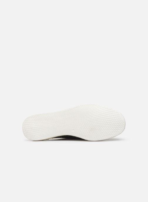 Chaussures à lacets Faguo Derbies Plane Suede Vert vue haut