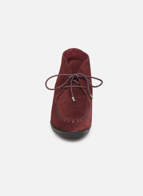 Bottines et boots Scholl Issenia 2.0 C Bordeaux vue portées chaussures