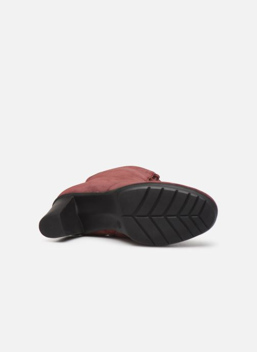 Ankle boots Scholl Mores C Burgundy view from above