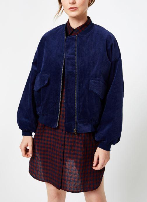 Vêtements Louche WALT CORD Bleu vue détail/paire