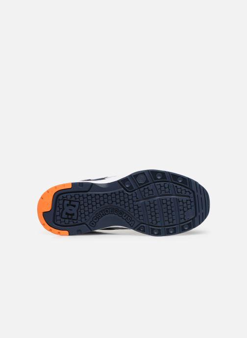 Baskets DC Shoes E.Tribeka Gris vue haut
