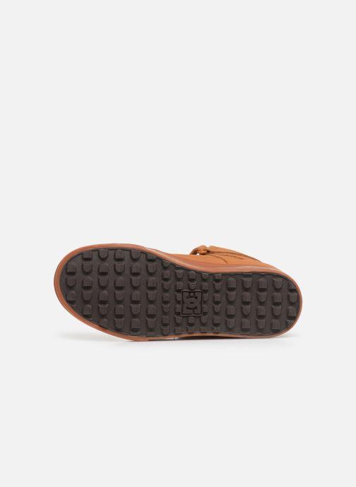 Sneaker DC Shoes Pure High-Top Wnt Ev braun ansicht von oben