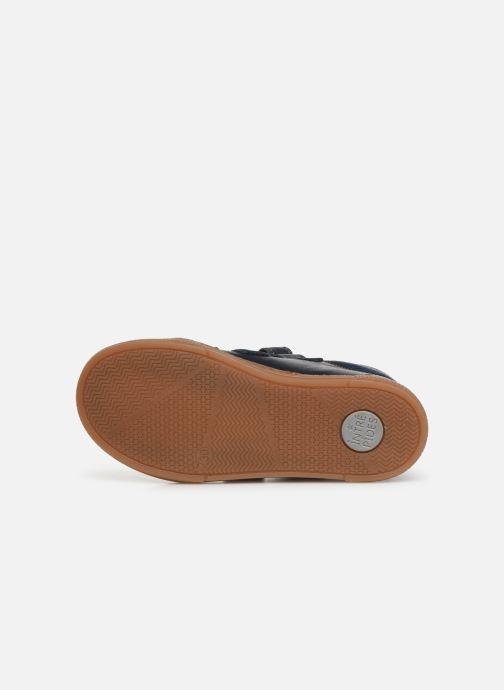 Sneakers Babybotte Kiwy Blauw boven