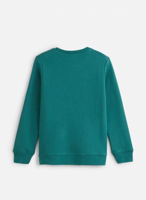 Vêtements IKKS JUNIOR  Sweat C Rond XP15013 Vert vue bas / vue portée sac
