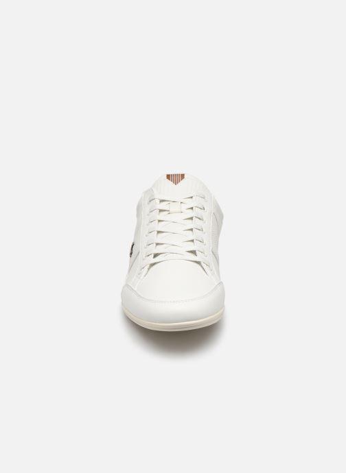 Baskets Lacoste Chaymon 319 1 CMA Blanc vue portées chaussures