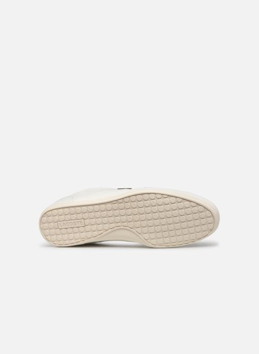 Trainers Lacoste Chaymon 319 1 CMA White view from above