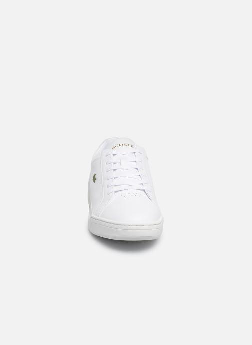 Sneakers Lacoste Challenge 319 5 SMA Hvid se skoene på