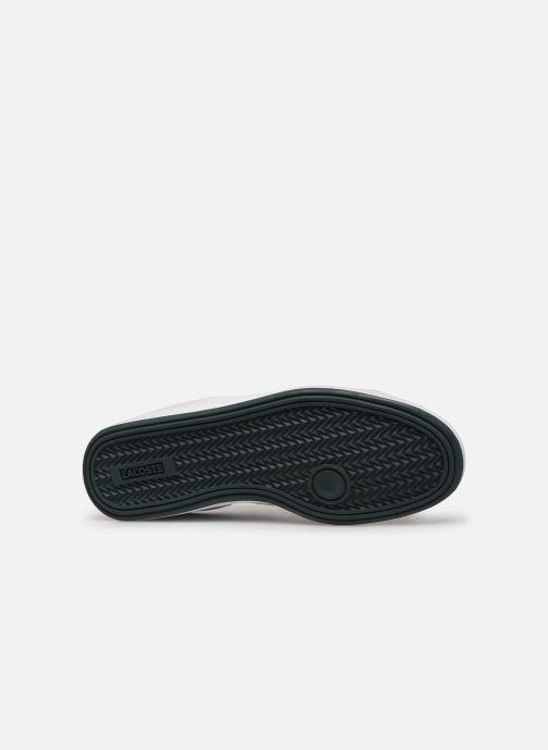 Sneaker Lacoste Graduate 319 1 SFA weiß ansicht von oben