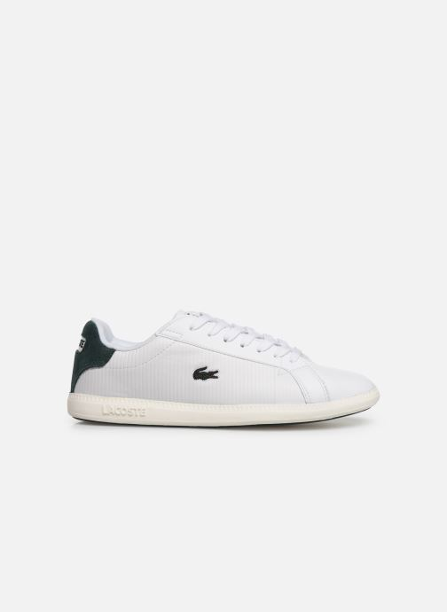 Sneaker Lacoste Graduate 319 2 SFA weiß ansicht von hinten