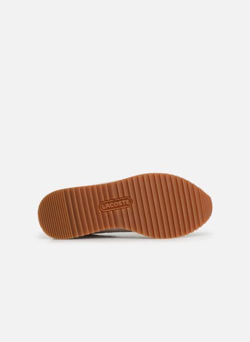 Sneaker Lacoste Partner Retro 319 1 SFA weiß ansicht von oben