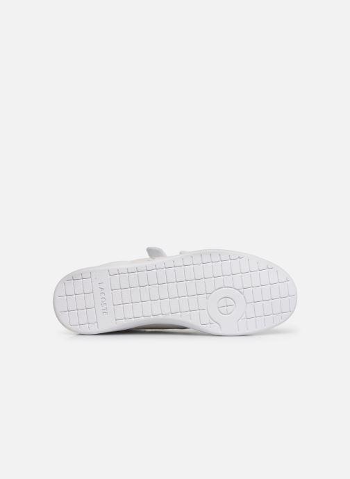Sneaker Lacoste Carnaby Evo Strap 319 1 SFA weiß ansicht von oben