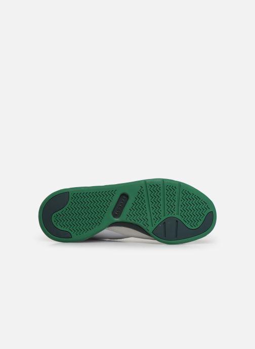Sneaker Lacoste Court Slam 319 3 SFA weiß ansicht von oben