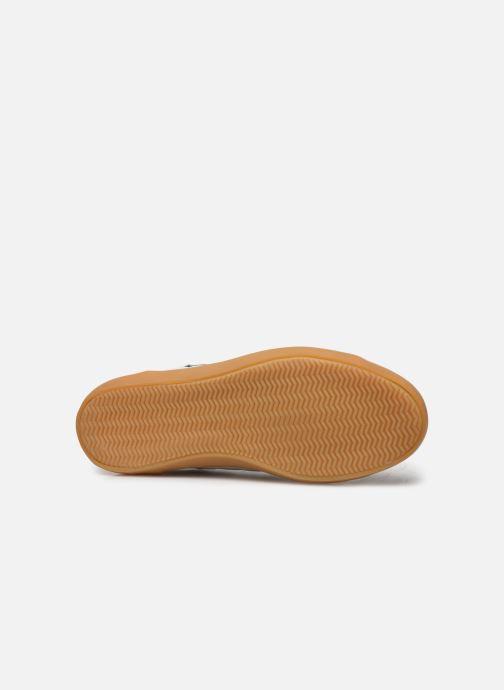 Sneaker Lacoste Sideline 319 1 CFA weiß ansicht von oben