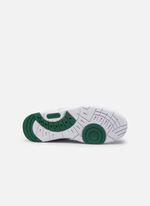 Baskets Lacoste Thrill 319 1 US SMA Blanc vue haut