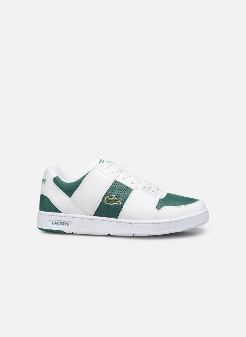 Sneakers Lacoste Thrill 319 3 US SMA Hvid se bagfra