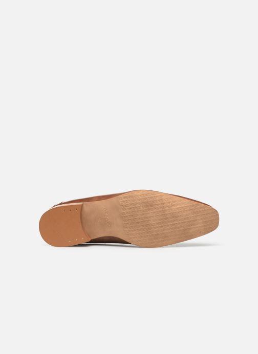 Zapatos con cordones Azzaro BOLDAVI Marrón vista de arriba