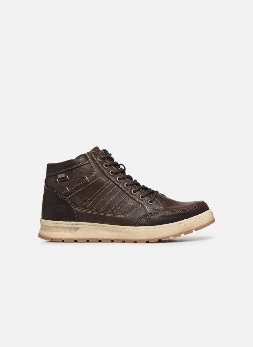 Sneaker Tom Tailor Monk braun ansicht von hinten