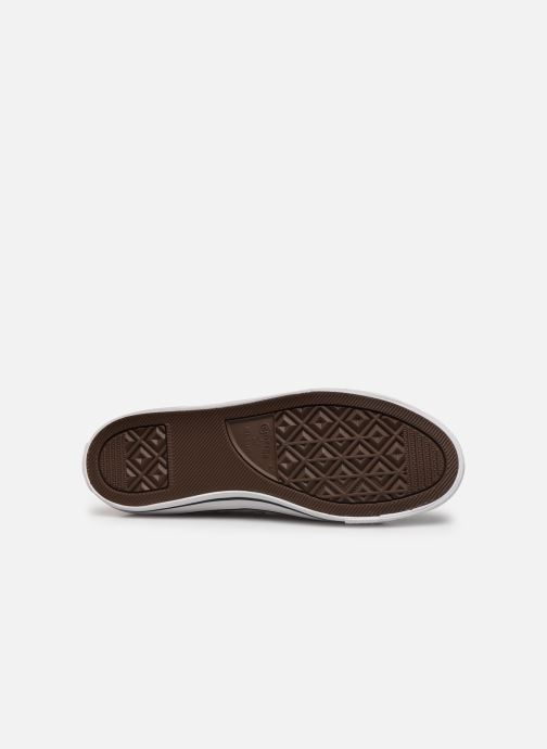 Sneaker Converse Chuck Taylor All Star Dainty Canvas Ox grau ansicht von oben