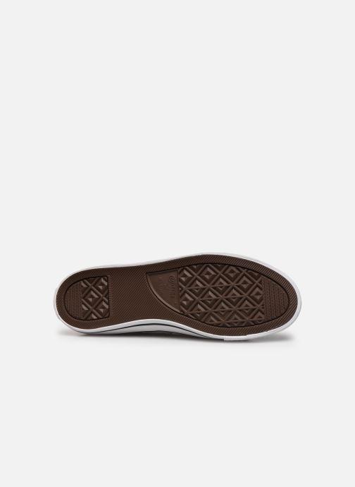 Sneakers Converse Chuck Taylor All Star Dainty Canvas Ox Grigio immagine dall'alto