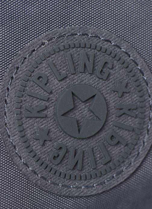 Handtaschen kipling ABANU grau ansicht von links