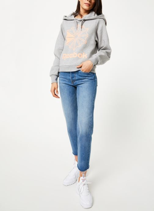 Reebok Sweatshirt hoodie - Cl Fl Big Logo Hoodi (Gris) - Vêtements (398362)
