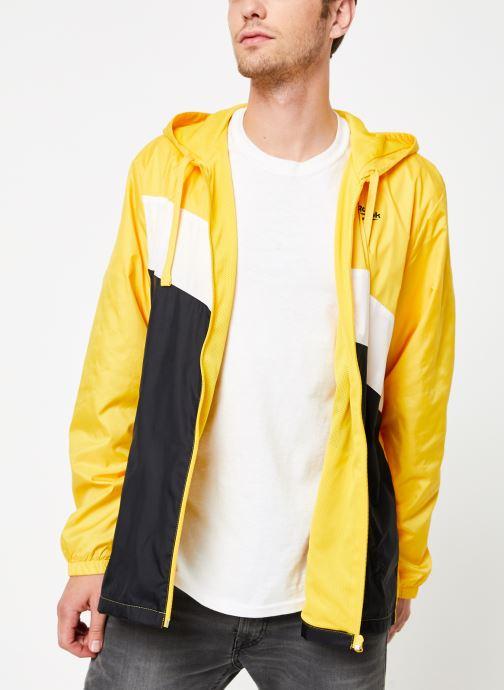 Vêtements Reebok Cl V P Windbreaker Jaune vue détail/paire