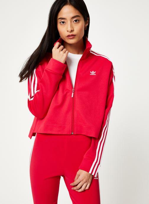 Vêtements adidas originals Tracktop Rose vue détail/paire