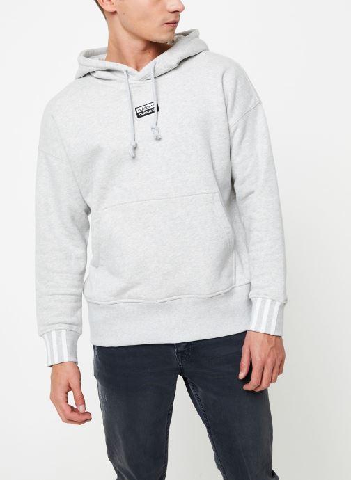 Vêtements adidas originals Hoodie Gris vue détail/paire