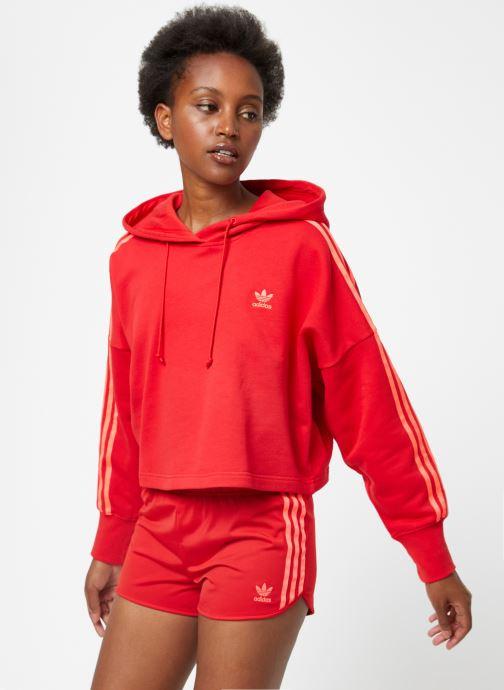 adidas Originals Cropped sweatshirt Cropped Röd