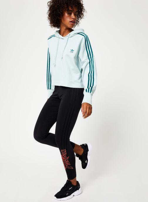 Vêtements adidas originals Cropped Hood Vert vue bas / vue portée sac