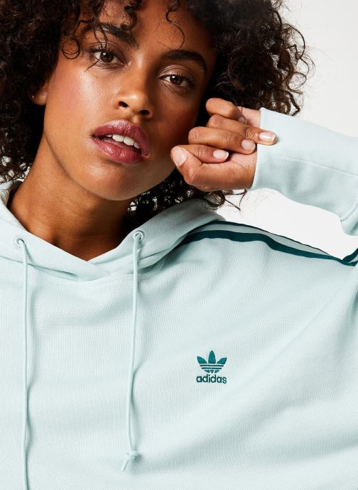 Vêtements adidas originals Cropped Hood Vert vue face