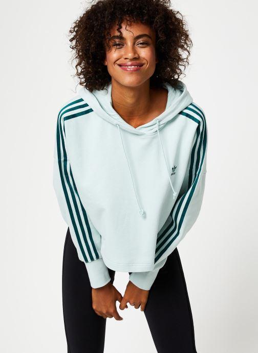 Vêtements adidas originals Cropped Hood Vert vue droite