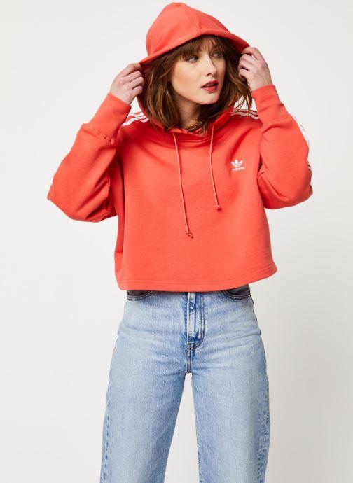Vêtements adidas originals Cropped Hood Orange vue détail/paire