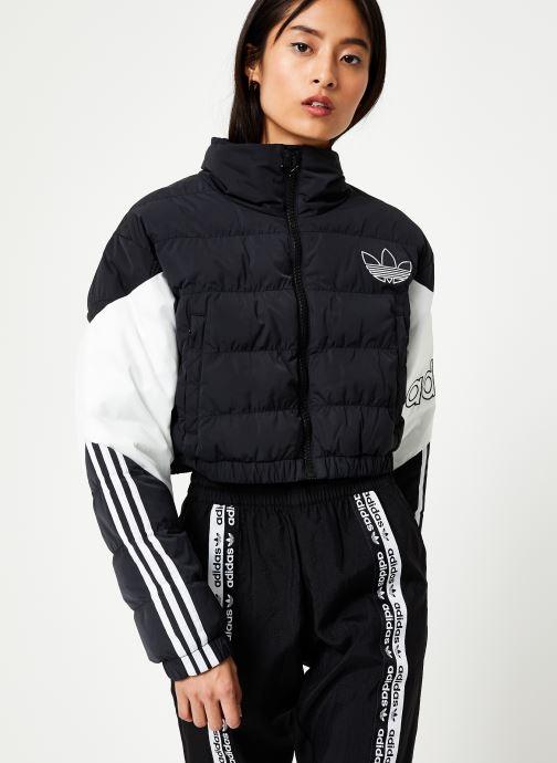 Vêtements adidas originals Cropped Puffer Noir vue détail/paire