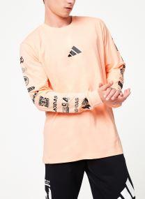 Sweatshirt - Tp Long Sleeve