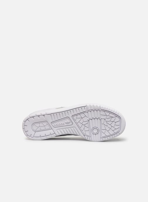 Sneakers adidas originals Rivalry Low Wit boven