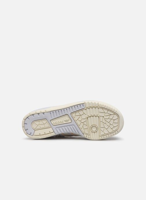 Sneaker adidas originals Rivalry Low W weiß ansicht von oben