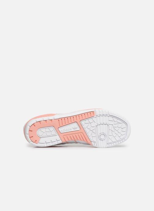 Sneakers adidas originals Rivalry Low W Bianco immagine dall'alto