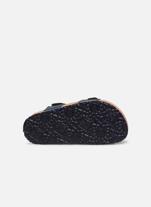 Sandali e scarpe aperte Gioseppo Mare Azzurro immagine dall'alto