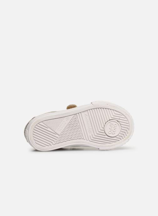 Baskets Gioseppo 43930 Or et bronze vue haut
