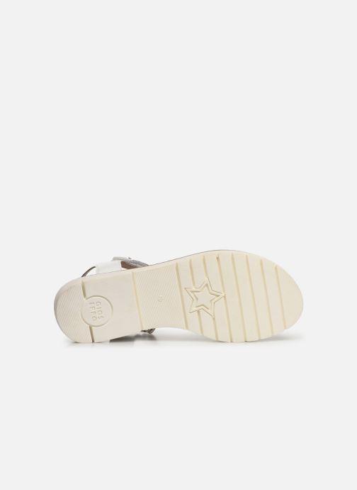 Sandales et nu-pieds Gioseppo Massa Blanc vue haut