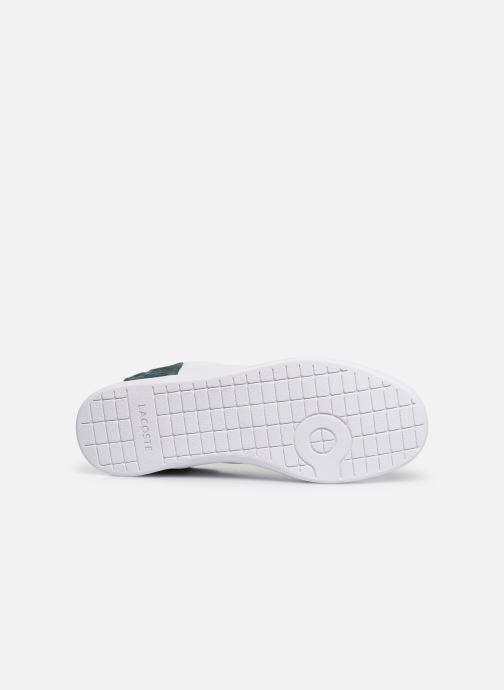 Sneaker Lacoste Carnaby Evo 419 2 SFA weiß ansicht von oben