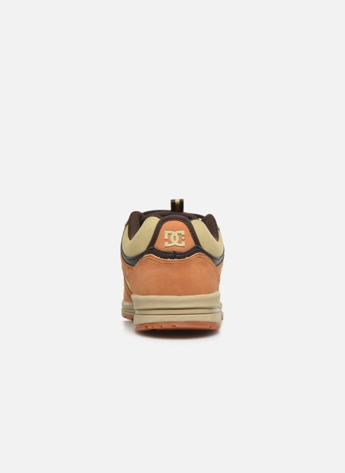 Trainers DC Shoes Kalis Lite SE Brown view from the right