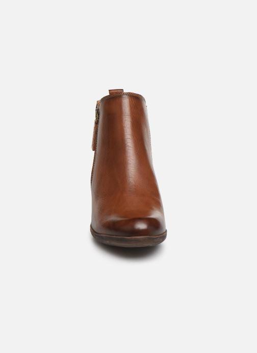 Stiefeletten & Boots Pikolinos Rotterdam 902-8900 braun schuhe getragen