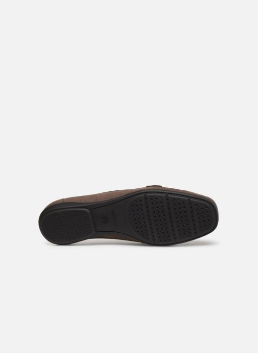 Loafers Geox D ANNYTAH MOC Brown view from above