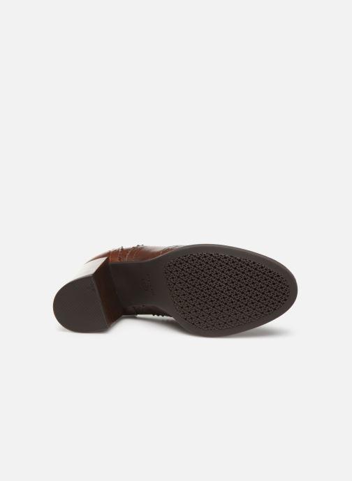 Chaussures à lacets Geox D JACY HIGH Marron vue haut