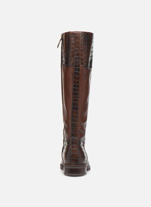 Støvler & gummistøvler Geox D BETTANIE 4  high Brun Se fra højre