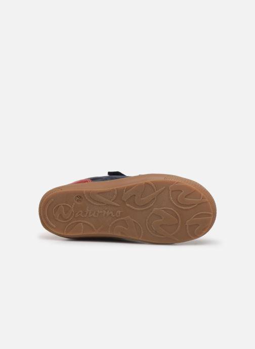 Bottines et boots Naturino Romy VL Bleu vue haut