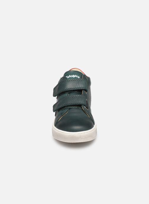 Bottines et boots Naturino Sasha VL Vert vue portées chaussures